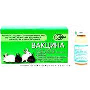 Вакцина против ВГБК кроликов инактивированная фото