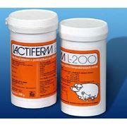 Пробиотик Лактиферм Л-200. Дополнительный корм для кормления сельскохозяйственных животных и птицы фото