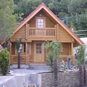 Строительство бревенчатых домов фото