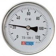 Термометр ТБ-100-1(осевое присоединение) фото