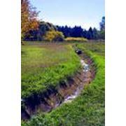 Полезащитная агролесомелиорация земель фото