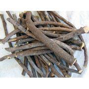Производство и продажа экстракта солодкового корня экстракта мыльного корня фото