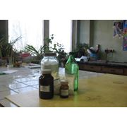 Винная кислота ГОСТ 5817-77 D-винная кислота виннокаменная кислота Украина фото