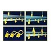 Линия ниппельного поения для бройлеров, перепелок фото