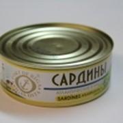 Рыбные консервы Сардина 240гр фото