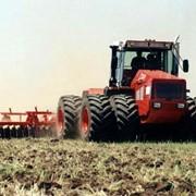 Обработка и посев почвы фото