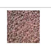 Сыпучие стройматериалы керамзитовый гравий купить Украина фото