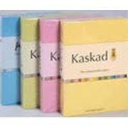 Бумага офисная цветная Fashion Kaskad фото