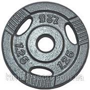 Диск для штанги, металл, порошковая окраска, вес - 1,25 кг фото