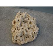 Известняк - Камень природный фото