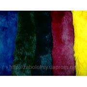 Пошив одежды в Полтавской области dcb39ec417ba6