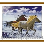 Набор для вышивки картины Свобода 55х46см 373-37010700 фото