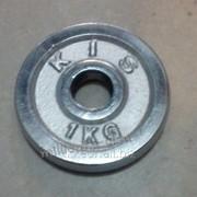 Диск хромированный. вес 1кг, дх28-1 фото