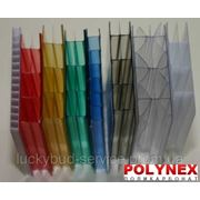 Поликарбонат сотовый POLYNEX 16 мм (цветной) фото
