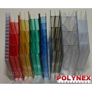 Поликарбонат сотовый POLYNEX 6 мм (цветной) фото