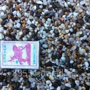 Галька морская крымская 3-5 мм фото