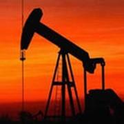 Нефтепродукты (бензин, дизельное топливо, керосин и др.) фото