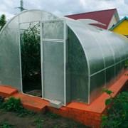 Теплица Сибирская 20Ц-0,5, 8 м. Шаг дуги-0,5м + форточка Автоинтеллект фото