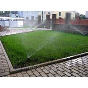Автоматический полив газона фото