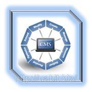 Дизайн внутренних систем управления (шаблон) фото