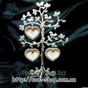 Родовое дерево (3) фото