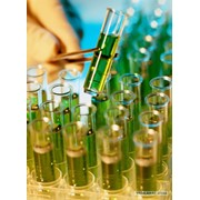 Реактивы д/клинической биохимии фото