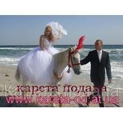 Свадебная, романтическая фото и видео сьмка с лошадьми и пони фото