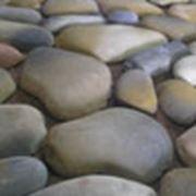 Камни фасадные. Речной голыш № 1 пепельно-коричневый. фото