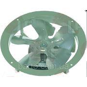 Вентилятор 6021050001 (230V 50/60Hz, o 170 мм) фото