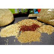 Экспорт: сельхозпродукцию пшеницу продовольственную пшеницу фуражную рожь ячмень кукурузу кукурузные отходы подсолнечник шрот подсолнечника жмых подсолнечника горох сою соевый жмых просо лен горчицу кориандр муку пшеничную муку ржаную фото