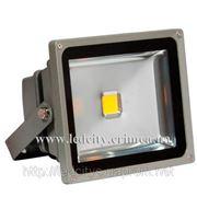 Светодиодный прожектор LCP-10W-C