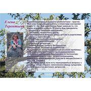 Консультации психолога Терентьевой Елены фото