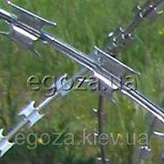 Колючая проволока 3,5 мм фото