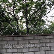 Егоза-Стандарт 500/3 фото