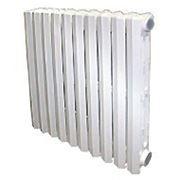 Радиатор чугунный KIRAN 92/300 фото