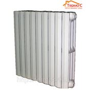Чугунный радиатор Чехия Vaidrus Termo 500/95 фото