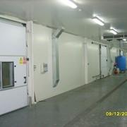 Холодильник промышленный В АРЕНДУ фото
