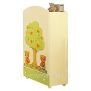 Шкаф Cuore крем/зеленый от Baby Expert фото