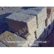 Камень ракушечник Одесса фото