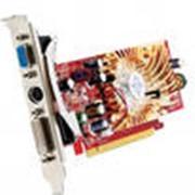 Видеокарта SVGA MSI PCI-E 256Mb 6600LE - TD256E TV DVI RET фото
