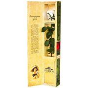 Одна долгосвежая роза FLORICH в подарочной упаковке. Белый бриллиант 7 карат, средний стебель. Харьков фото