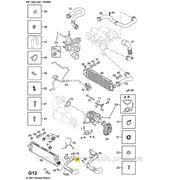Патрубок турбина — интеркулер на Opel Vivaro 06-> 2.0dCi — Opel (оригинал) - 44 19 135 фото