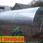 Парник с поликарбонатом АГРОСИЛА 3 на 6 (4,8 м.)