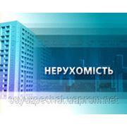 Реклама на телевидении Тематические блоки Видеосюжет фото