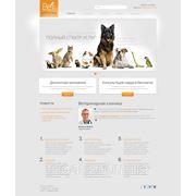 Сайт ветеринарной клиники фото