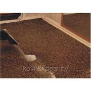 Химчистка ковров, ковровых покрытий и мягкой мебели фото