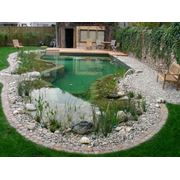 Откачивание воды из садовых прудов и водоемов фото