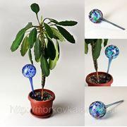 Шар для полива растений Аква Глоб, Aqua Globe, купить шар для полива растений фото