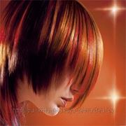 Окраска волос в Бресте фото