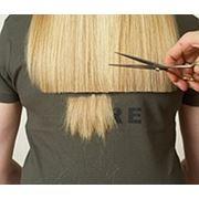 Стрижка кончиков волос в Бресте фото